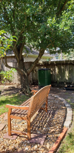 A wider view of the garden, showing a live oak, a wooden bench, and in the background, the vegetable garden guarded by the old gnome.